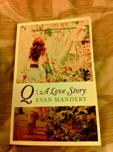 Q: A Love Story by Evan Mandery